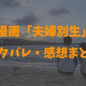 夫婦別生・最新話【第11話】のネタバレ・感想!みんなの意見で・・・